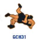 GCH31